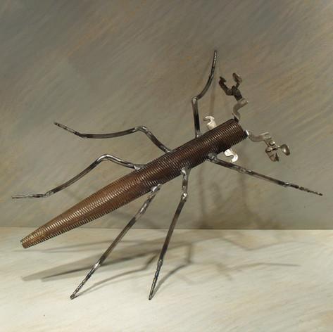insecte 160 euros