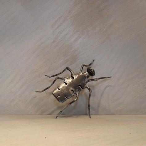 insecte 110 euros