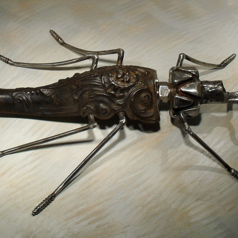 gros insecte 350 euros