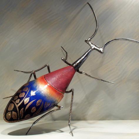 scarabée 800 euros