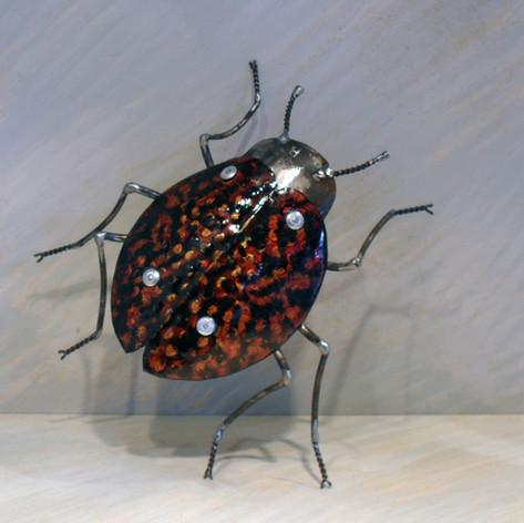 scarabée 300 eruos
