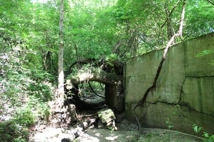 120 year old bridge in woods