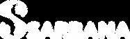 logo blanc sarbana.png