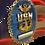 Thumbnail: Command Master Chief Badge US Flag Wall Hanging