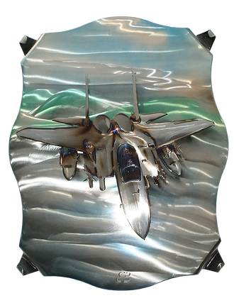 F-15 Tomcat Ebee Jr.