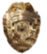 Patrolman Badge.png