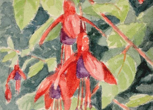 Small Fuchsia Print