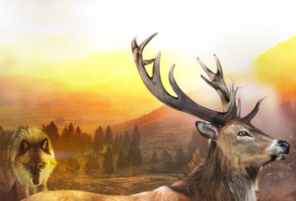 Hunting Challenge - Game Ui PSD