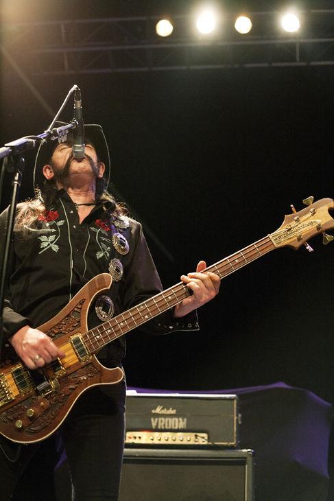 Lemmy Kilmister - Head Cat