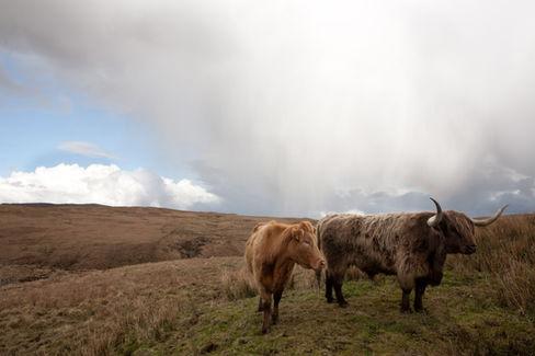 Isle of Skye, Scotland, UK