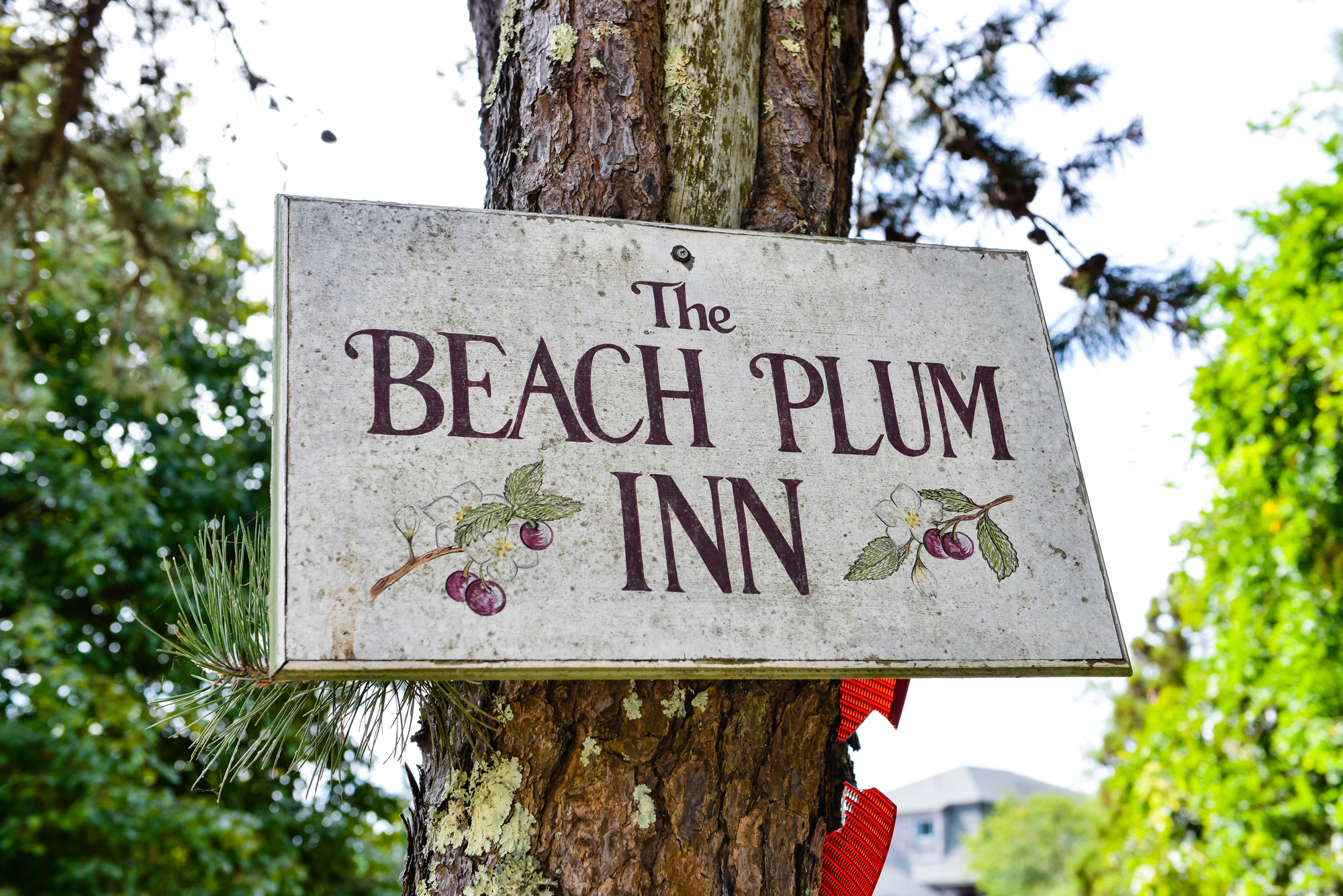 The sign at The Beach Plum Inn & Restaurant photo by David Welch Photography