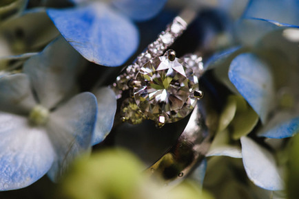 Wedding rings photo by David Welch Photography