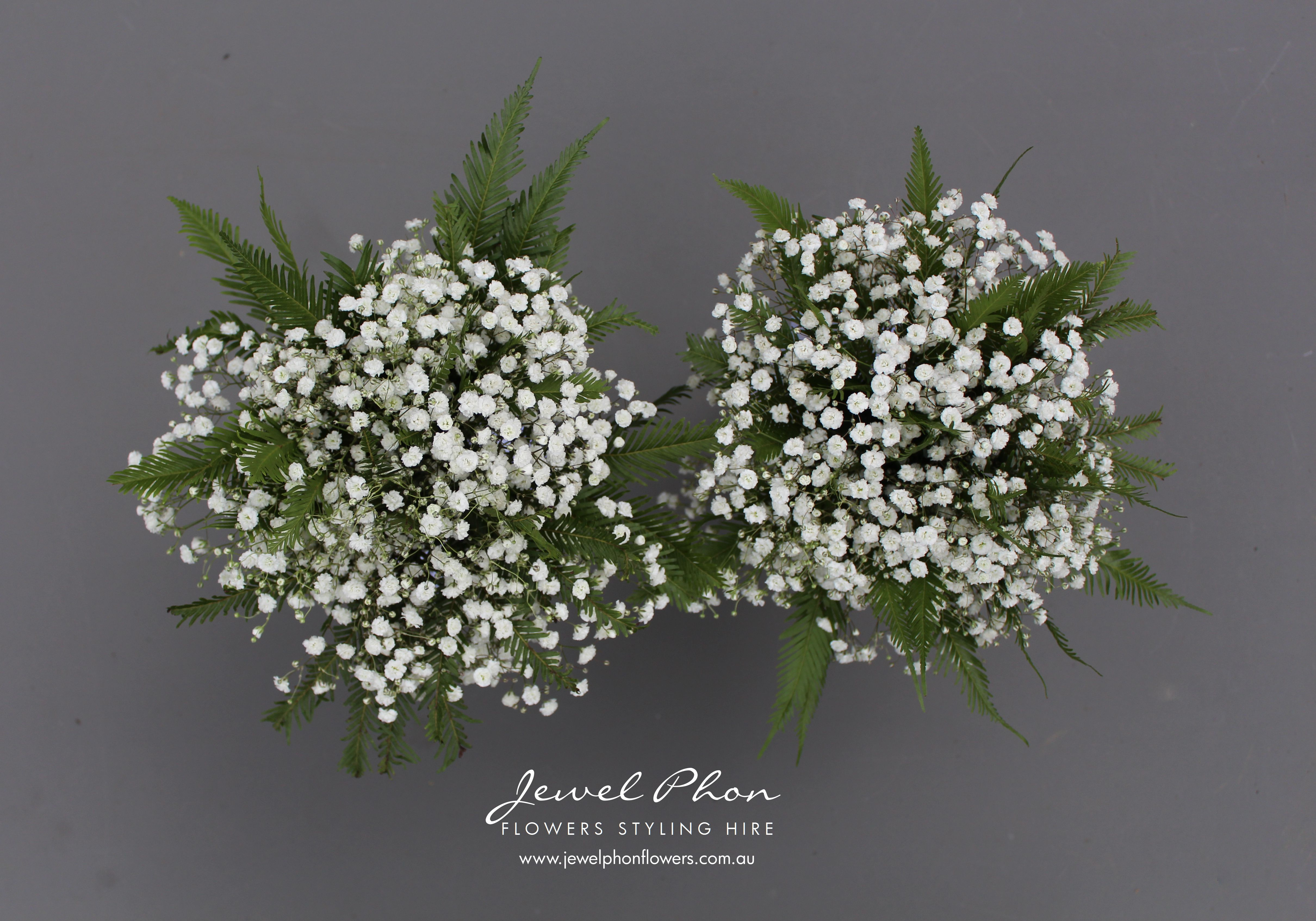 Melanie S Bridesmaid Bouquets Babys Breath Fern