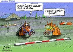 dessin chevaux 042