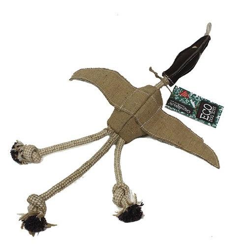 Desmond the Duck