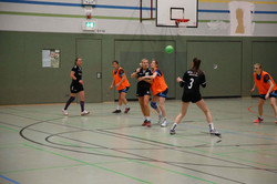 Handball0443