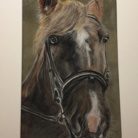 Commission sold, pastel on paper.