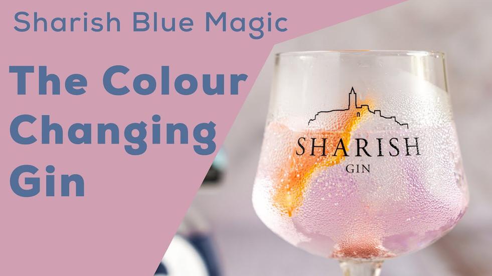 Gin Sharish Blue Magic