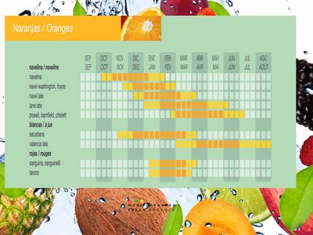 Our Spanish Oranges Calender