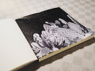#2017yearbook | dark nature cactus obssession