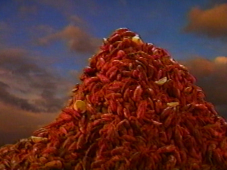 In honor of Spring, here is Crawfish Mountain!