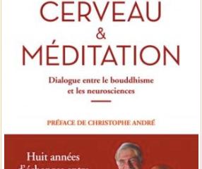 Psychologie - Cerveau et méditation : dialogue entre le bouddhisme et les neurosciences.