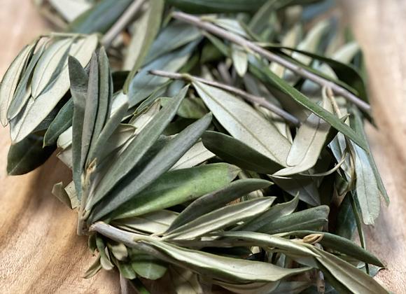 Doğal Zeytin Yaprağı / Olijven bladeren