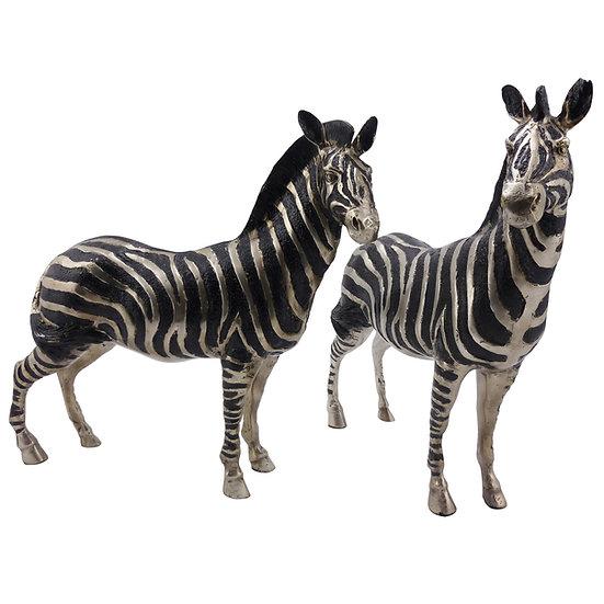 Bronze Zebra