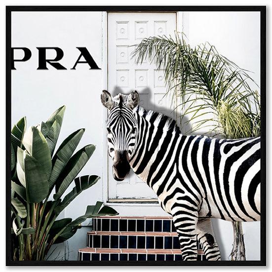 Framed Zebra Graphic Art Print