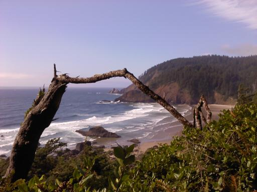 Cannon Beach's Ecola State Park