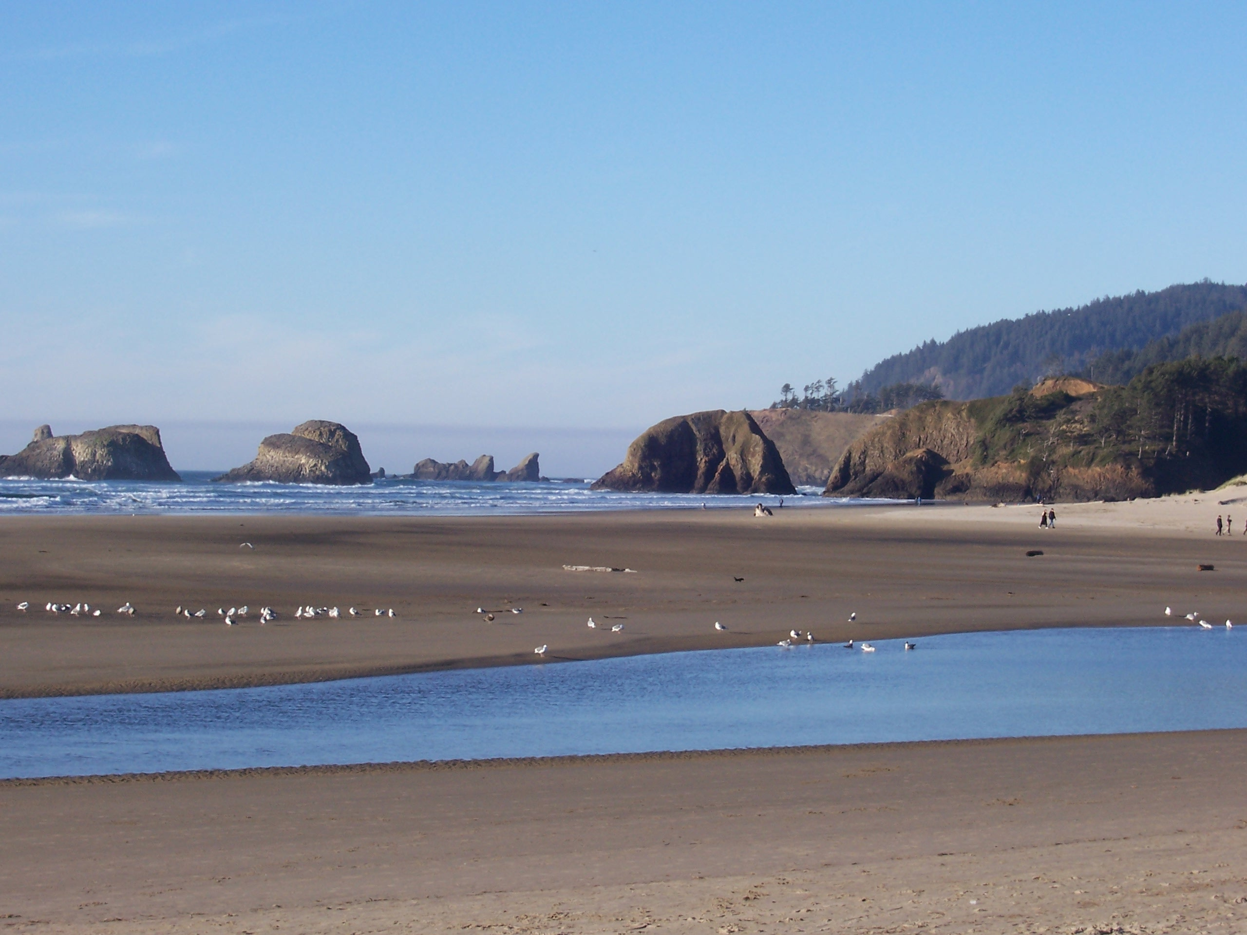 Bluer-than-blue day at Cannon Beach