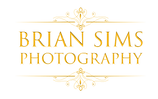new size gold logo.png