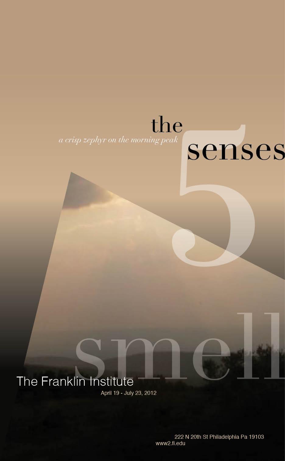 5 Senses Mock Exhibit