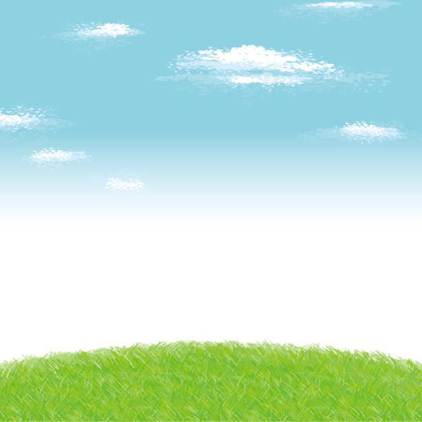 Grassy Knoll.jpg