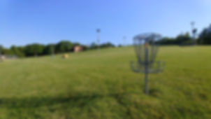 Disc Golf and Hill