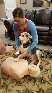 2017 Emily teaching Max CPR.jpg