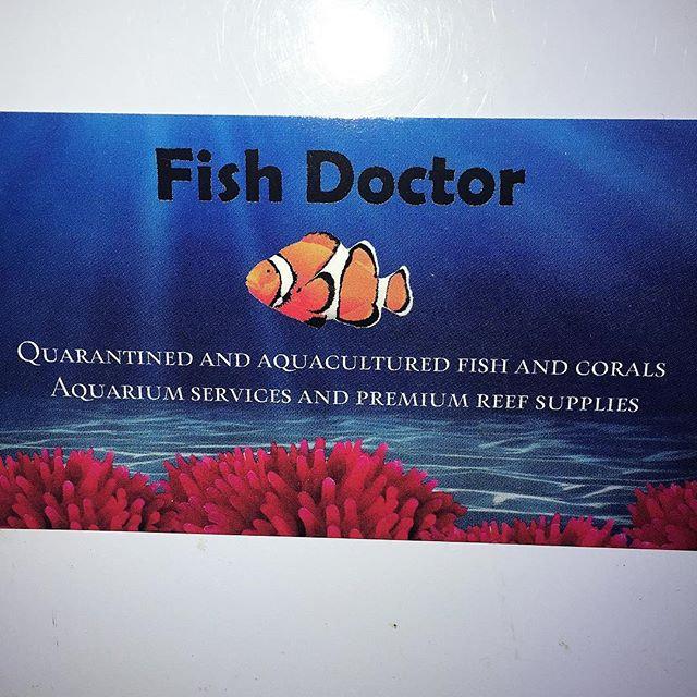 Aquarium Service 4 hours