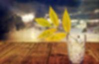 still-life-1139582_1280.jpg