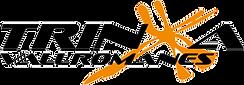 logoTRINXA250.png