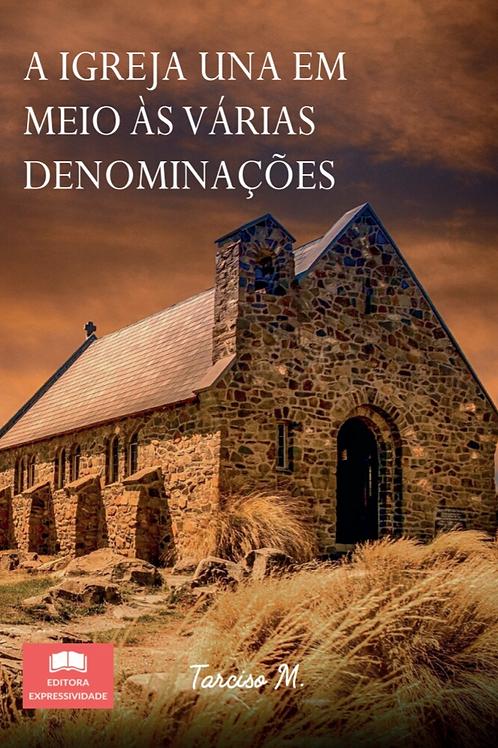 A Igreja una em meio às várias denominações