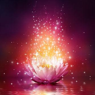glowing_lotus_CARRE.jpg