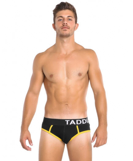Brief TADDLEE Electric