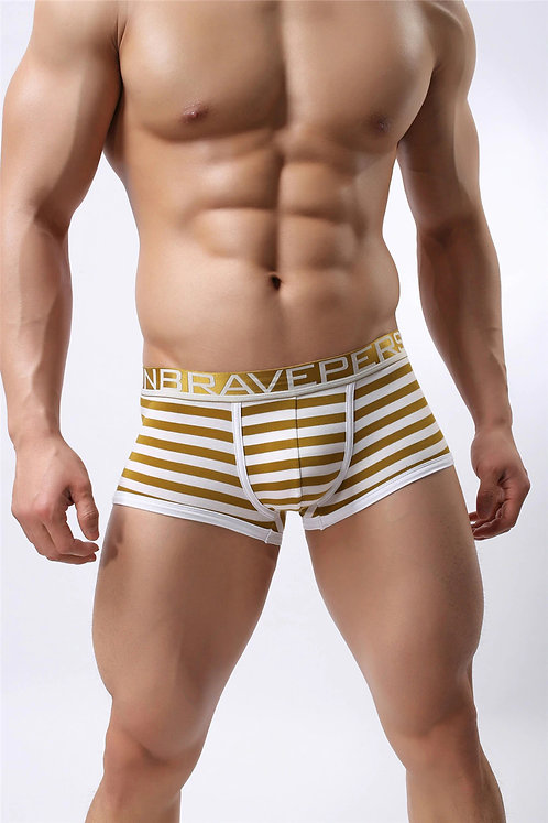 Boxer Brave Person Rayas Doradas