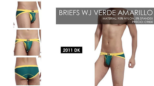 BRIEFS WJ 2011 DK