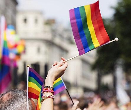 Bandera Pride pequeña 14 x 21 c