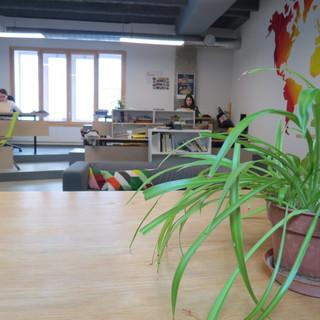 coworking (5).JPG