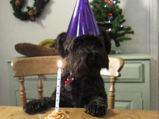 Ottile 1st Birthday
