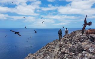 Exploration de Egg Island et monitoring
