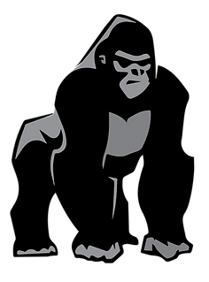 Silverback Gorilla transparent backgroun