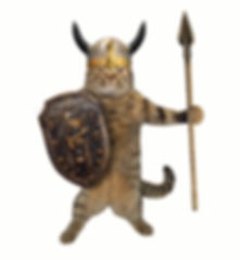 The cat in a viking helmet holds a spear